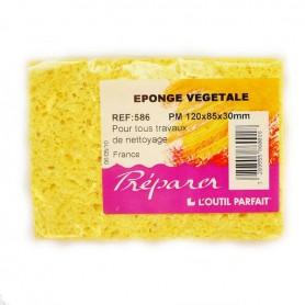 Vegetal sponge